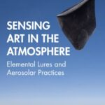 Online book talk: Engelmann, Sensing Art in the Anthropocene