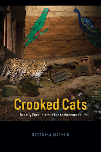 Online book talk: Nayanika Mathur, Crooked Cats