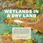 Online book talk: O'Gorman, Wetlands in a Dry Land
