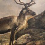 Nordic Nature: Art, Ecology, Landscape